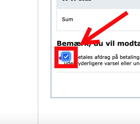 """Step 14 of making a repayment plan for VAT loan: If you agree, click the box in the lower-left corner followed by the """"Godkend"""" button to the right."""